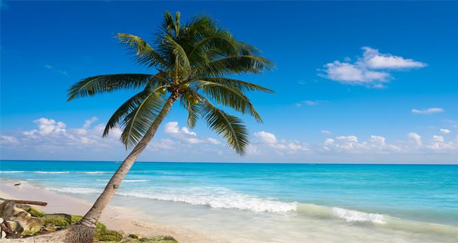 Blog-Thumbnail-DTU-Trip-Playa-del-Carmen-Beach.png