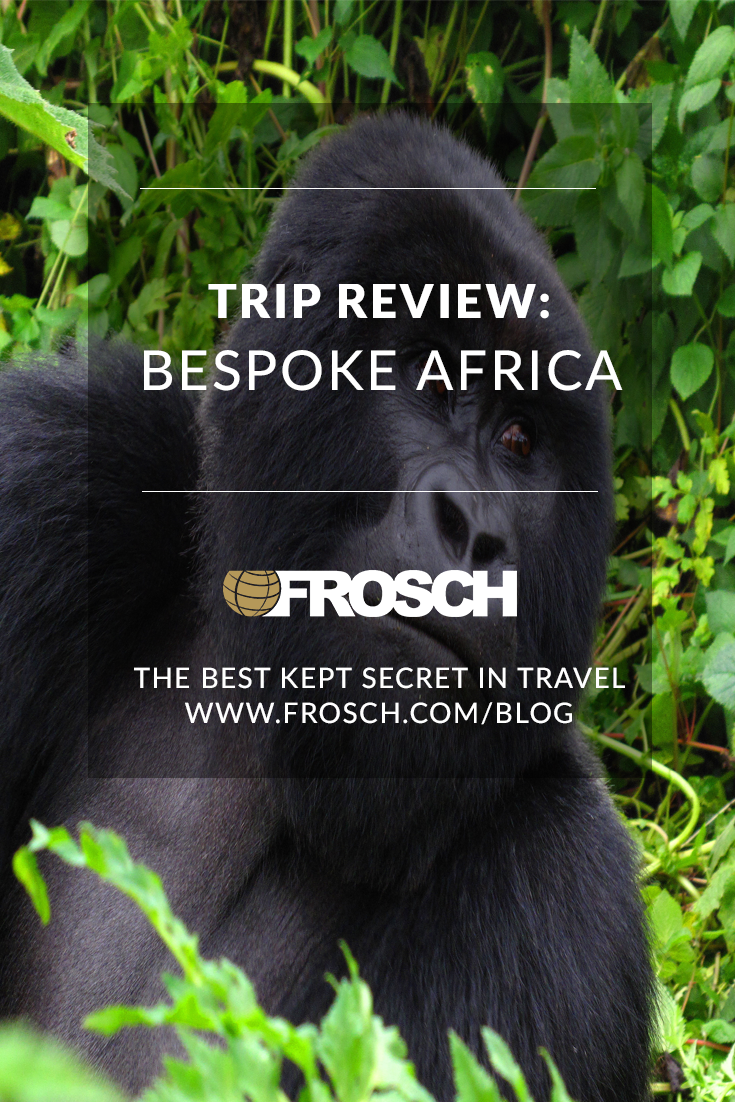 Blog-Footer-Trip-Review-Bespoke-Africa.png