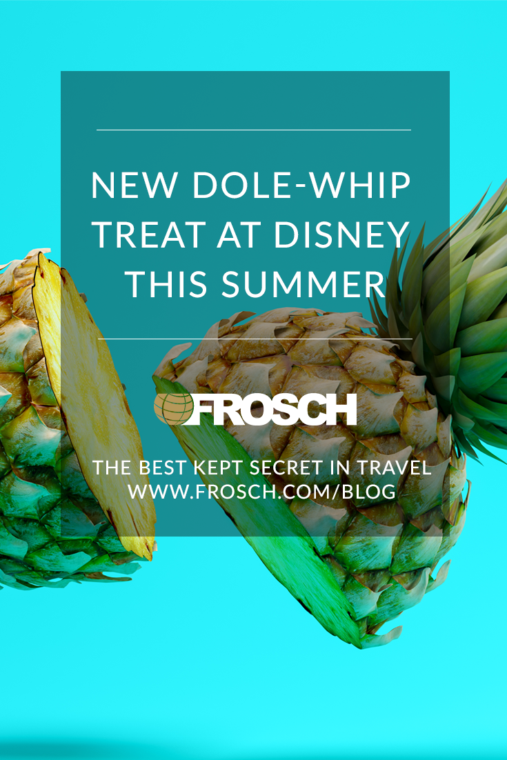 Blog Footer - New Dole-Whip Treat at Disney This Summer