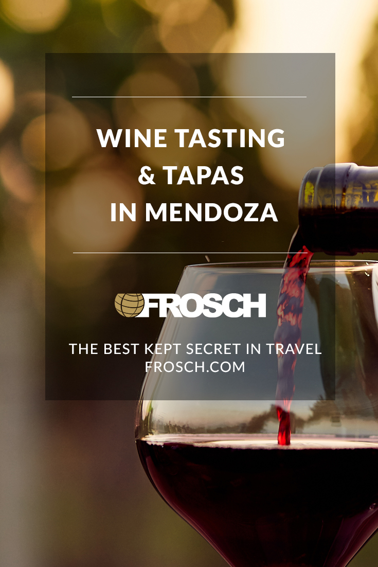 Blog Footer - Wine Tasting and Tapas in Mendoza