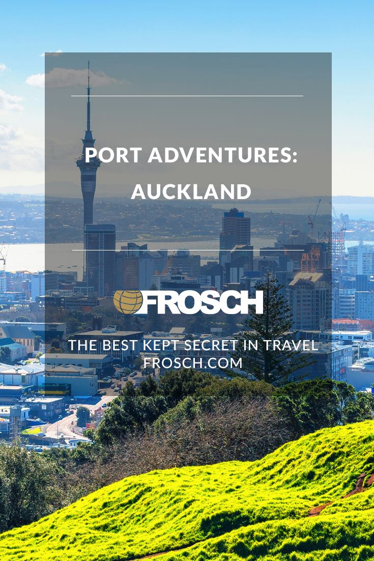 Blog Footer - Port Adventures Auckland