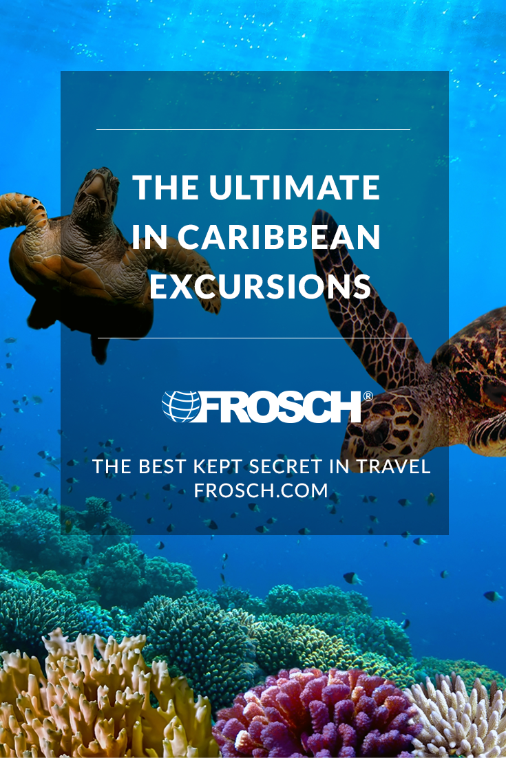 Blog Footer - The Ultimate in Caribbean Excursions