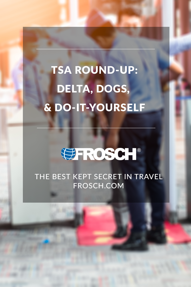 Blog Footer - Trip Review - Delta Dogs and Do It Yourself
