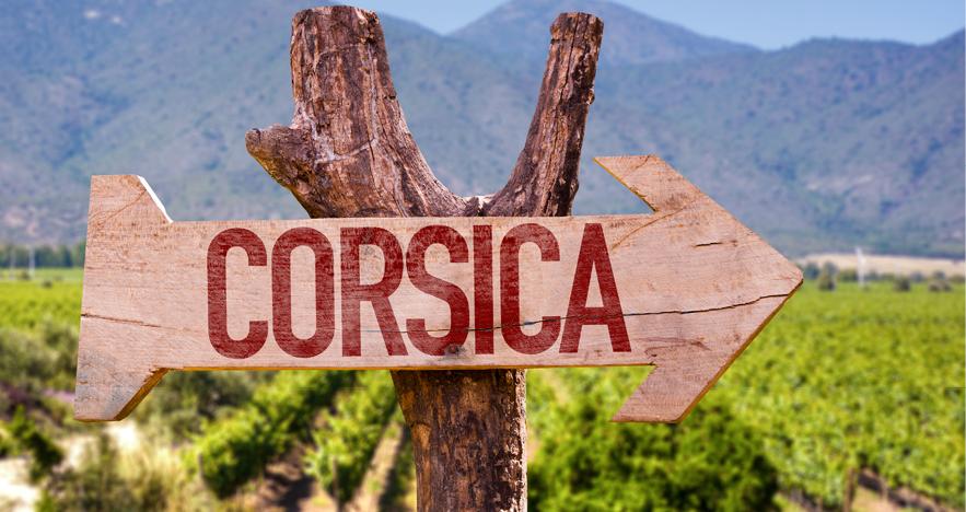 Blog Thumbnail - Corsica Winery